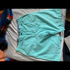 Modern amusement sea foam green shorts
